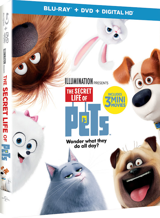 The Secret Life of Pets Giveaway - Central Minnesota Mom