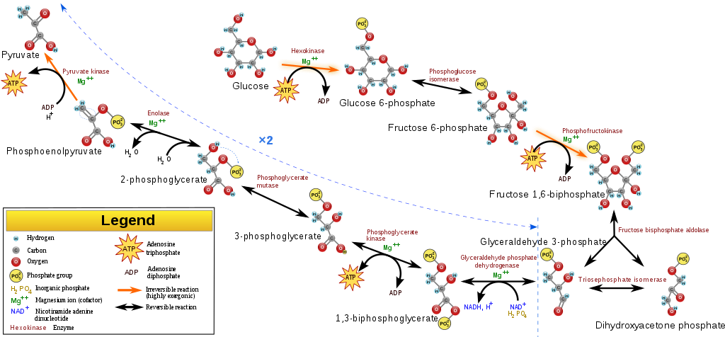 Universe Life Science Future 02 11 2014