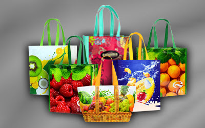 Eco Friendly, Reusable Shopping Bags, Woven Polypropylene Bags Manufacturers  - GBAG