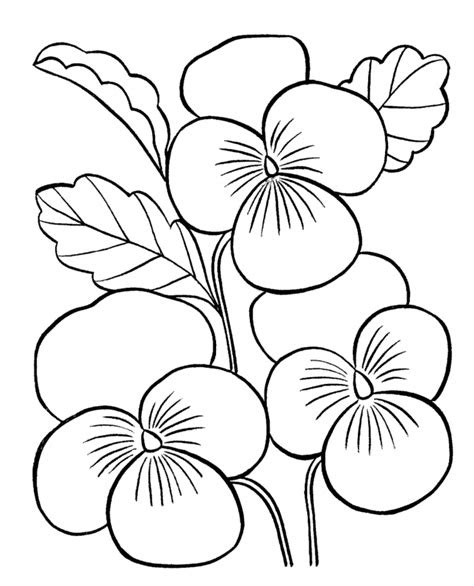 Flower Coloring Pages For Adults - Creative Art