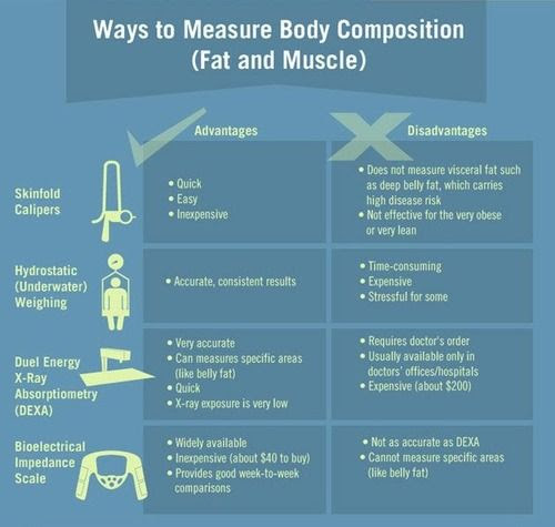 calculate body fat percentage from measurements