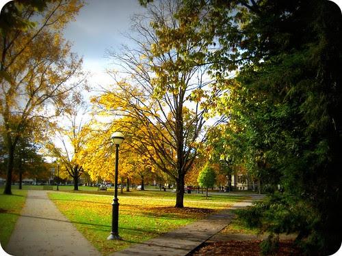 Dartmouth is so pretty.
