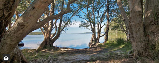 Neranie Campground: Myall Lakes Camping
