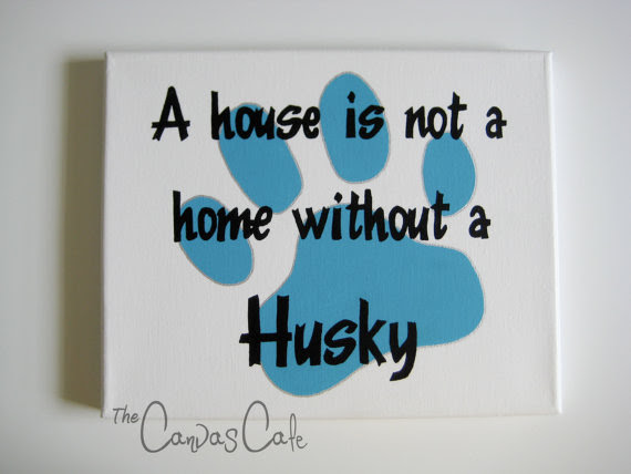 A House Is Not A Home Without A Pet Quotespicturescom