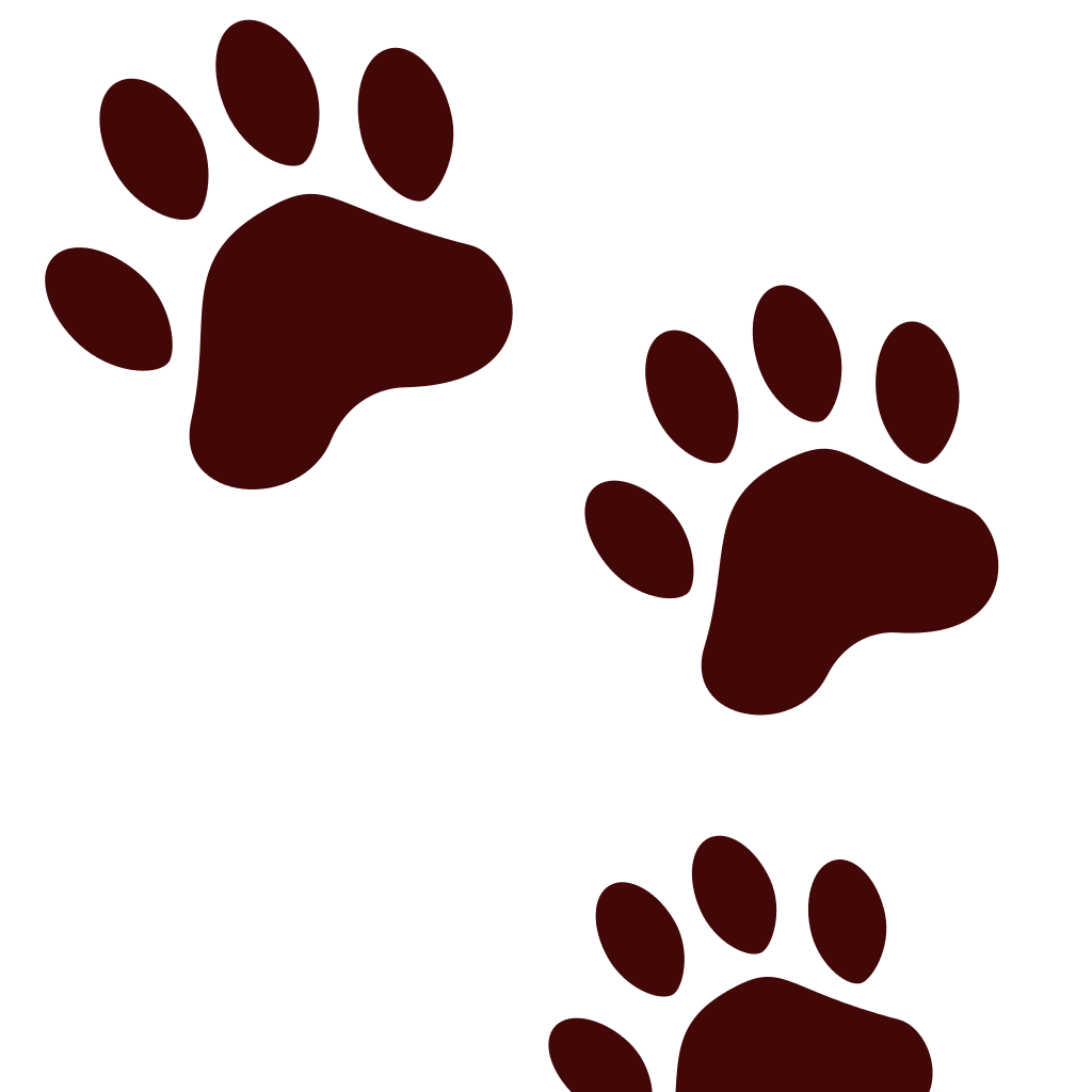 Download Paw Prints svg, Download Paw Prints svg for free 2019