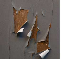 HOME DZINE | Why does paint peel or blister