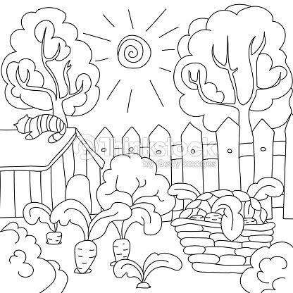 Vector Para Colorear Zanahoria Del Libro En El Jardín Arte Vectorial