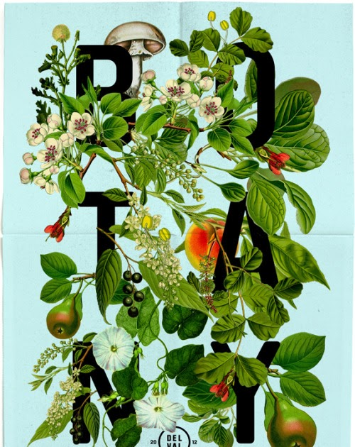 Collection / Botany