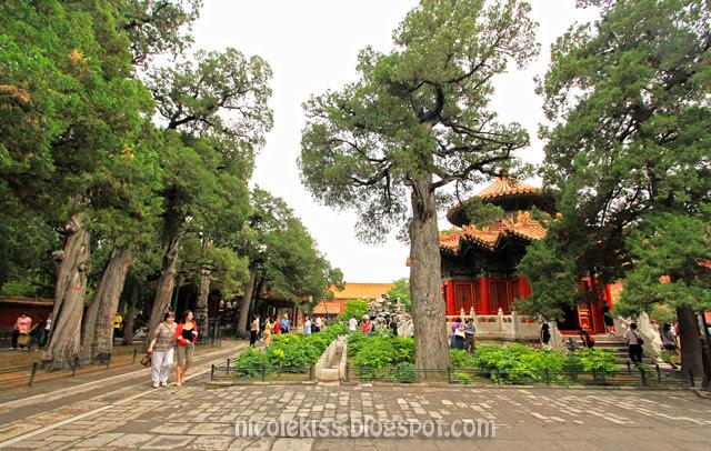 Yu Hua Yuan, Forbidden City, Beijing