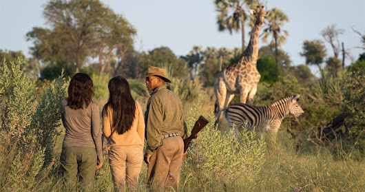 When to visit the Chobe National Park
