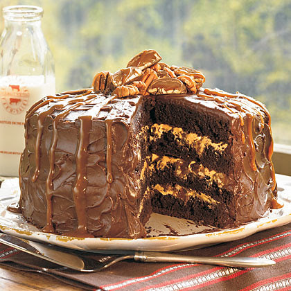 chocolate-cake (2)