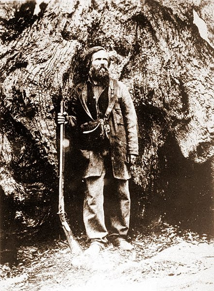 File:Galen Clark in the Big Tree Grove.jpeg