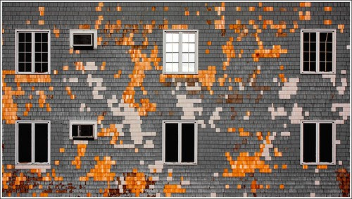 Pixelated por Tailer Ransom