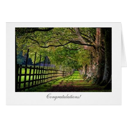 A Walk In The Park - General Congratulations Greeting Card