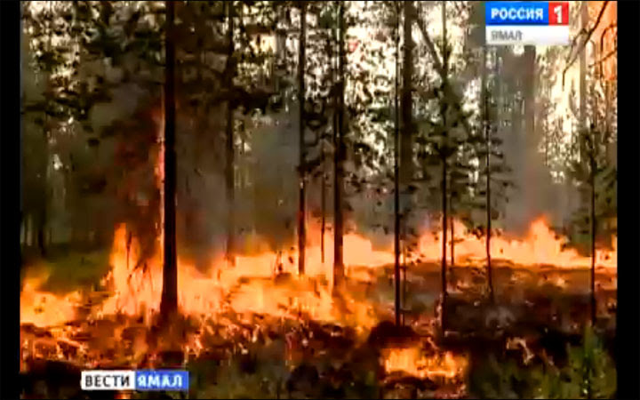 Siberia's wildfires seen from 1 million miles away: even the tundra is burning