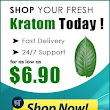 How important is choosing the best place to buy Kratom? | Buy Kratom | Best Place to get Kratom in 2019