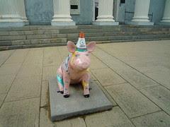 lexington pig