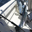 First white marlin of season caught, released off OC | OceanCity.com