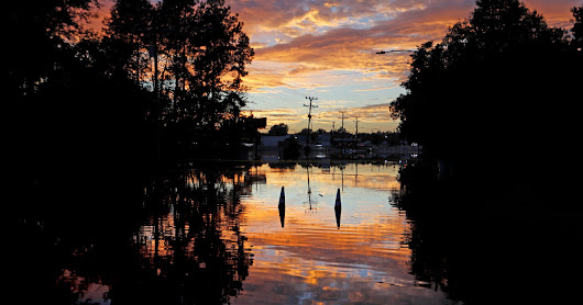 Hurricane Florence aftermath: Large, aggressive mosquitoes swarm North Carolina city, Gov. Cooper orders $4 million to fund mosquito control efforts - CBS News
