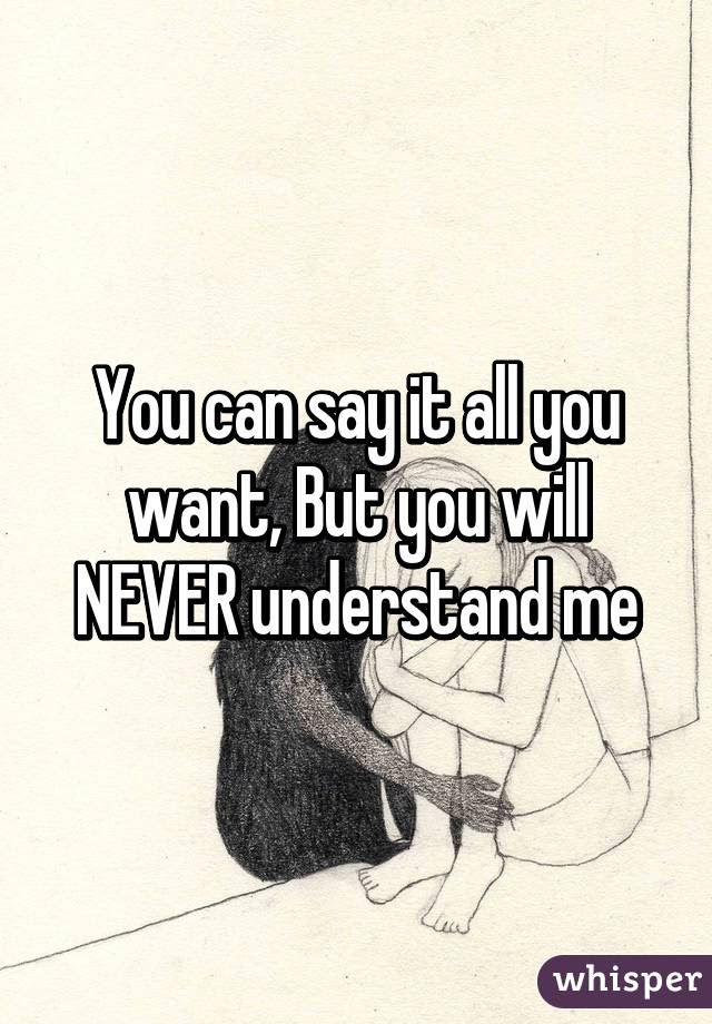 You Can Say It All You Want But You Will Never Understand Me
