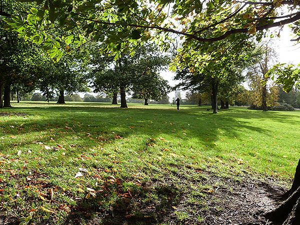 pelouses Kensington