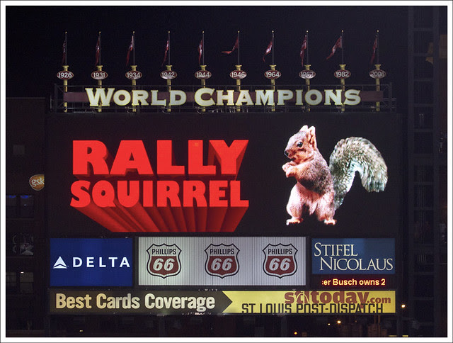 Rally Squirrel 1