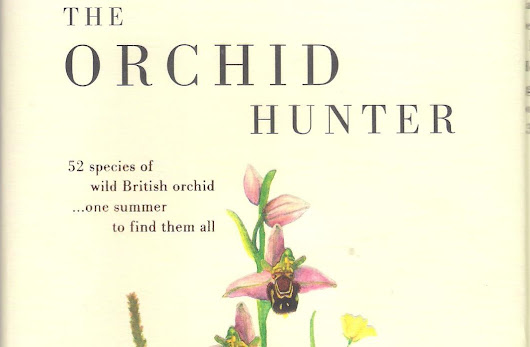 "Livro ""The Orchid Hunter"""
