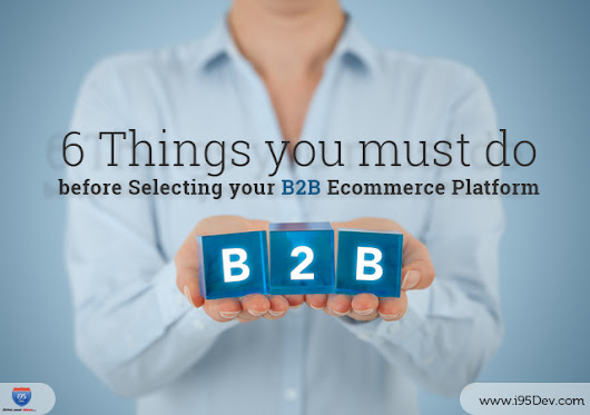 6 Things you must do before Selecting your B2B Ecommerce Platform - i95dev