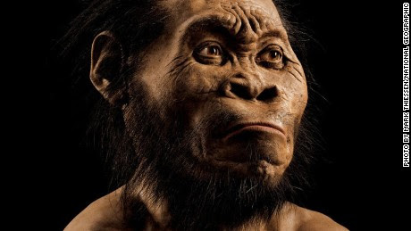 Homo naledi: New species of human ancestor discovered - CNN.com