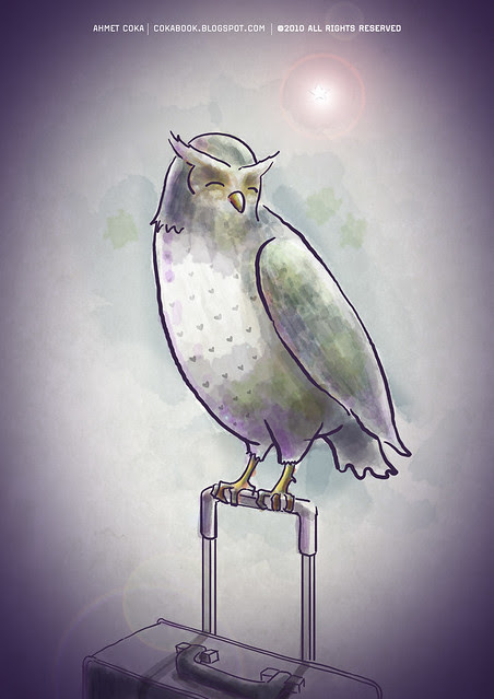 owl & pole star