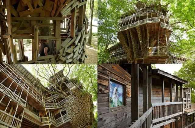 A maior casa da árvore do mundo 05