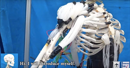 Researchers create skeleton robot with human-like muscles