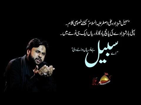 Nohay 2019 | Sabeel Ha Loriyan Waly Di | Zawar Qurban Jaffri | New Noha ...
