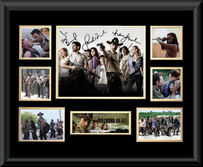 The Walking Dead Framed Montage Television Entertainment
