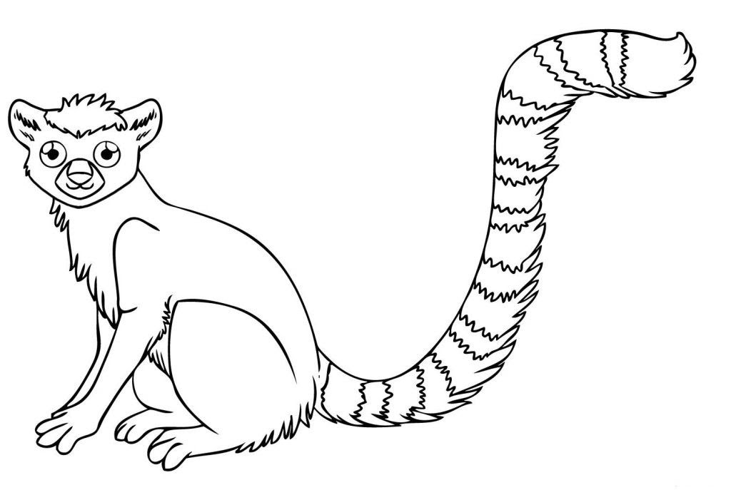 Rainforest Animals Coloring Pages Free - Coloring Home