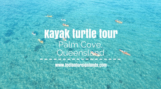 Kayak turtle tour, Palm Cove - Feet on Foreign Lands
