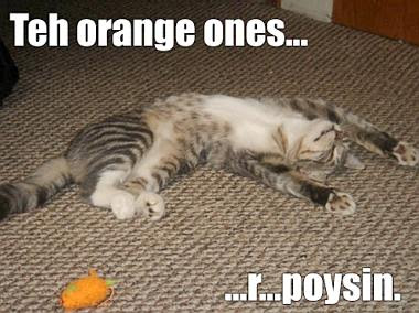 poysin orange ones