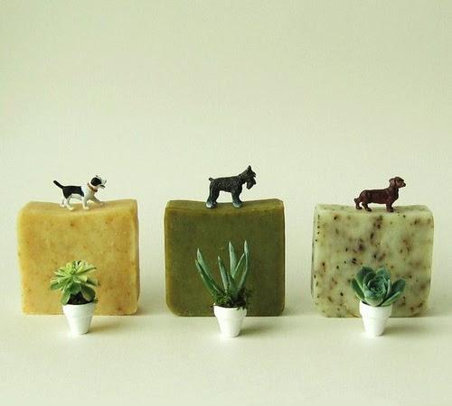 Shop: Organic Soap Bars