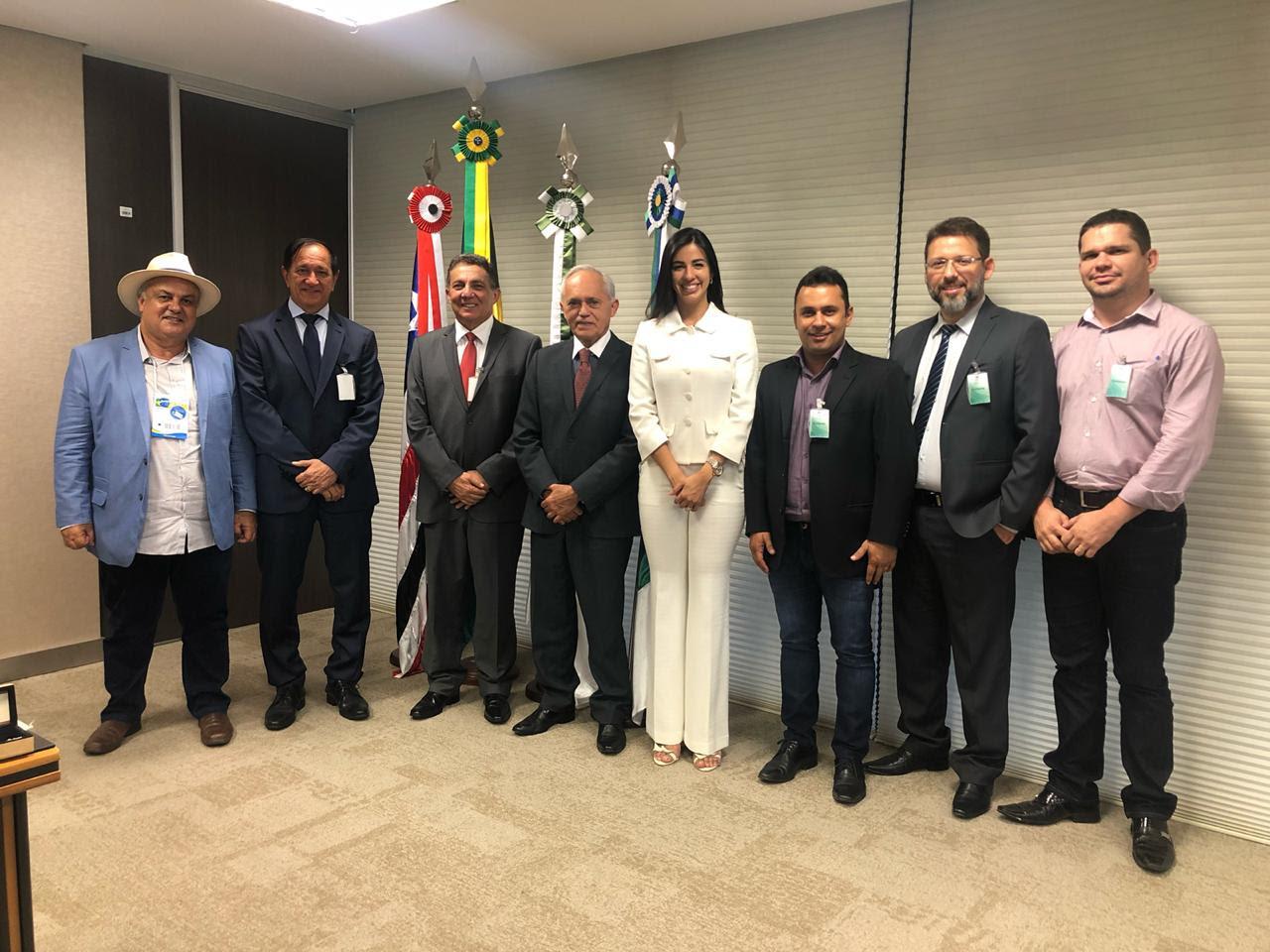 Cleomar Tema, deputada eleita Daniella e prefeitos visitam presidente do TCU