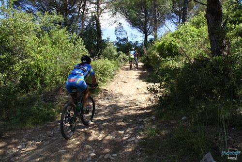 BTT Coimbra XCM 2012 Montemor (273) Subida, Topgel