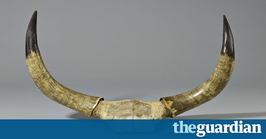 South Africa: The Art of a Nation review – from the dawn of man to the violence of apartheid | Art and design | The Guardian
