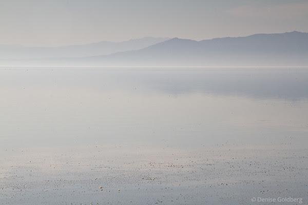 Salton Sea, reflections, mist