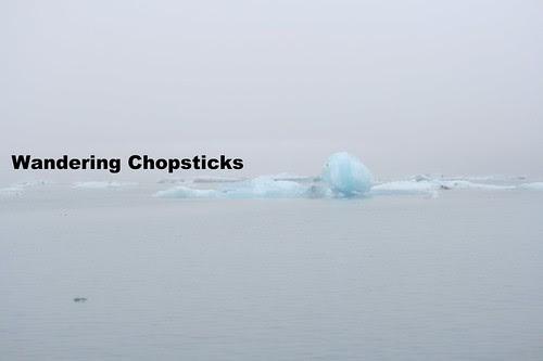 12 Jokulsarlon (Glacier Lagoon) - Iceland 11