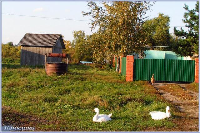 Село Конюшки. Чаплыгинский район. Липецкая область.