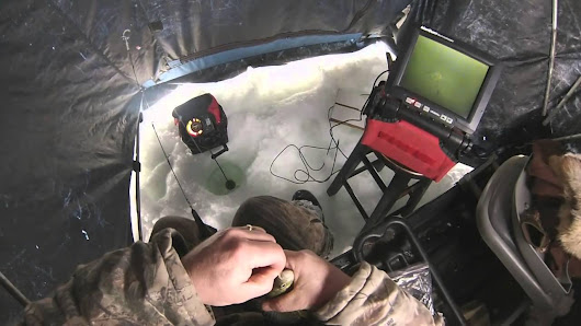 Ice Fishing for Bluegills - Tips and Tricks - FISHING HOBBY