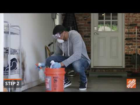 How to Get Rid of Mold The Home Depot