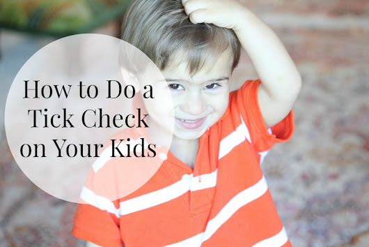How to Do a Tick Check on Your Kids