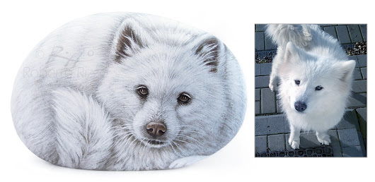 Samoyed Dog Portrait on a Sea Stone | Fine Art by Roberto Rizzo