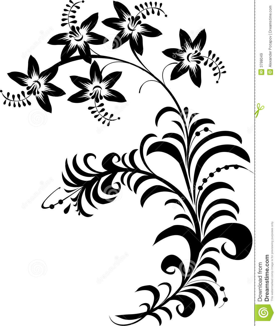 Flowers Black And White Drawing At Getdrawingscom Free For