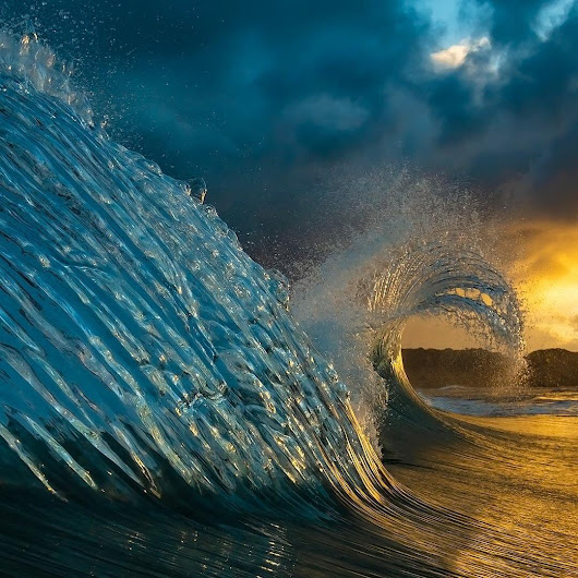 Interesting Photo of the Day: Ocean Wave Swan